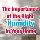 humidifier in home